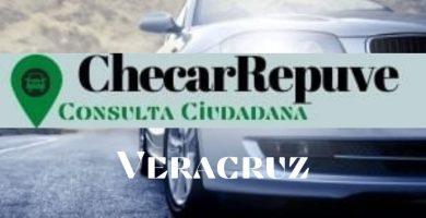 repuve veracruz registro vehicular